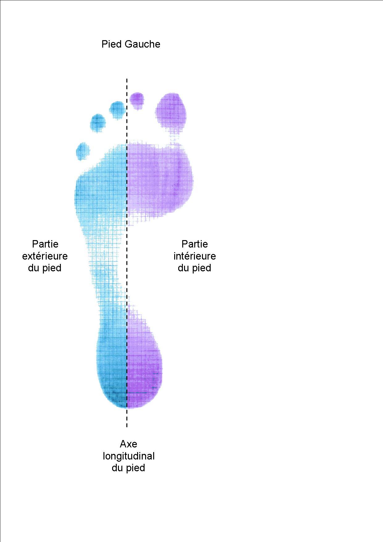 Empreinte pied bicolore Talonnettes Prona