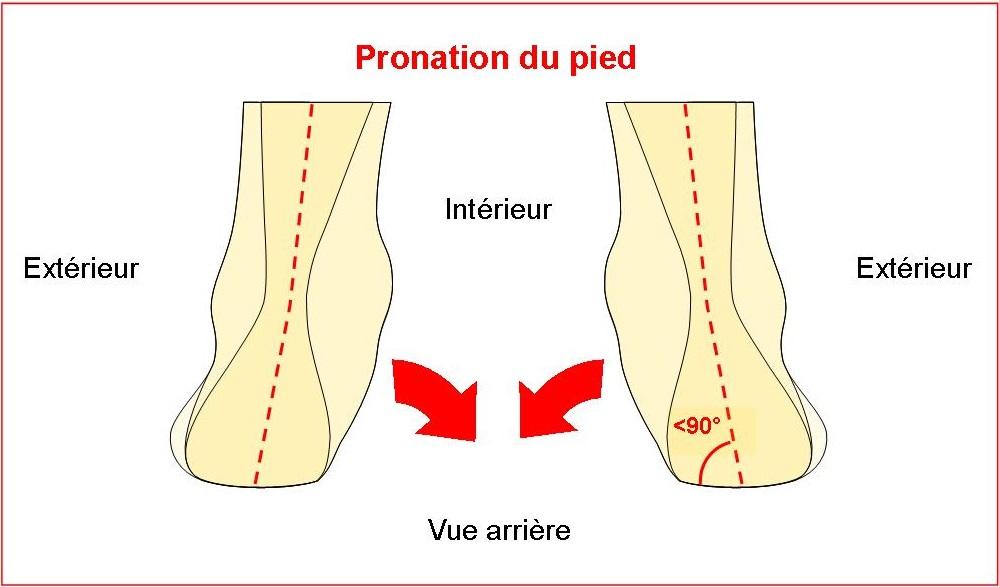 Schéma pronation pied