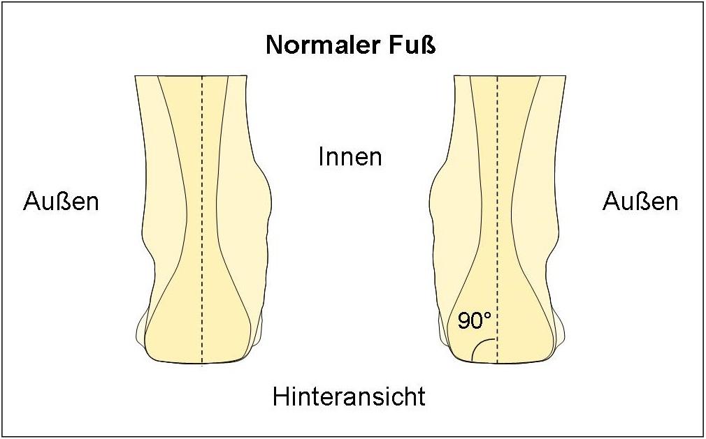 Schema Normaler Fuß