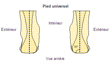 Pied universel
